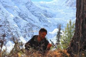 研究人员提醒生物因子调控喜马拉雅高山树线改变速率